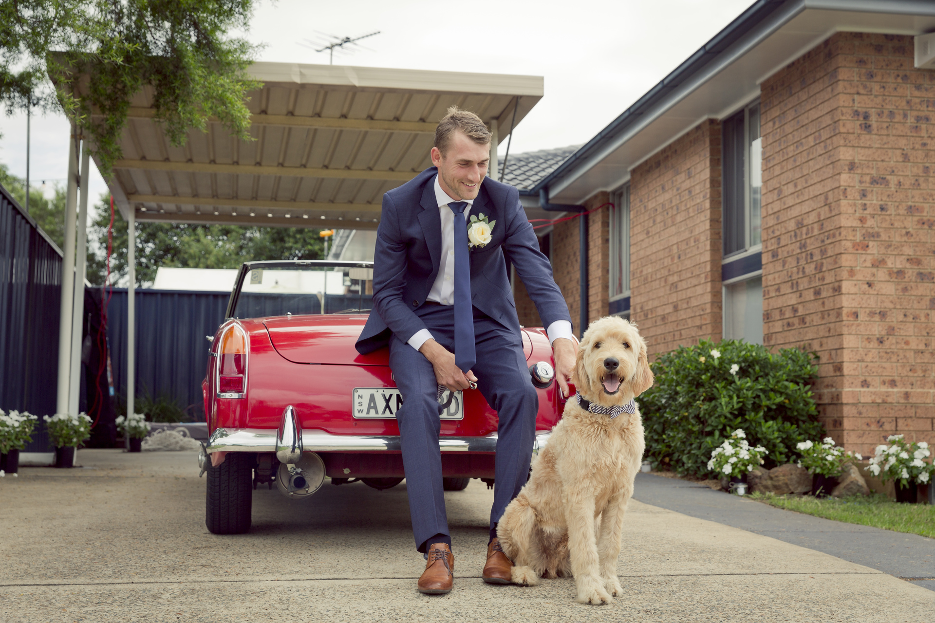 Groom and dog with wedding car